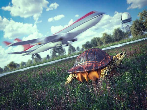 Grund Flugverspätung